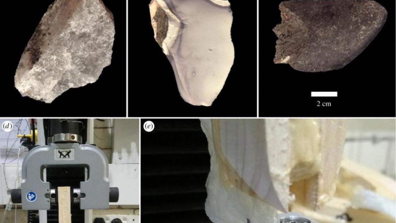 Già un milione di anni fa gli umani fabbricavano strumenti in pietra