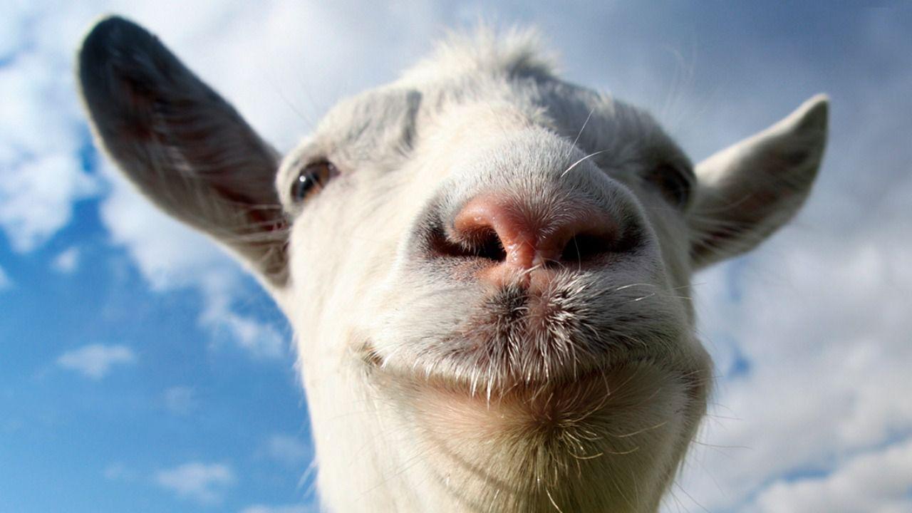 Goat Simulator: aggiornamento in arrivo per la versione mobile