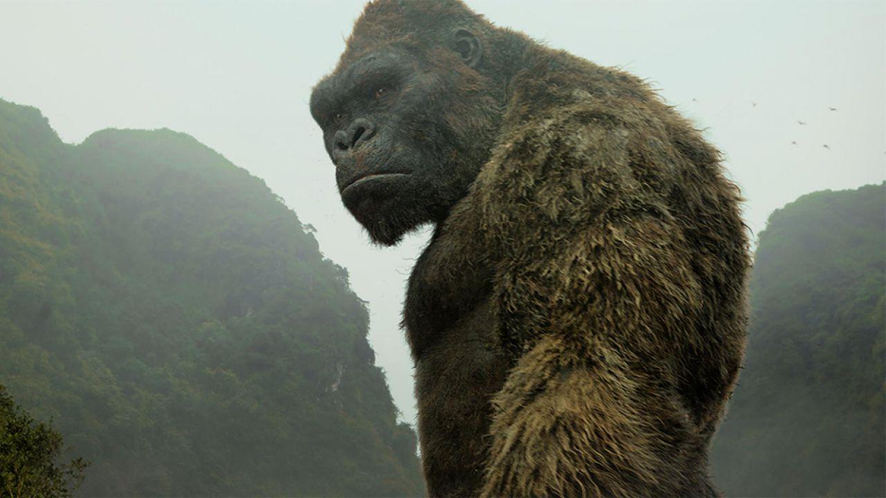 Godzilla v Kong andrà in streaming, clamoroso: Warner rifiuta 200 milioni da Netflix!
