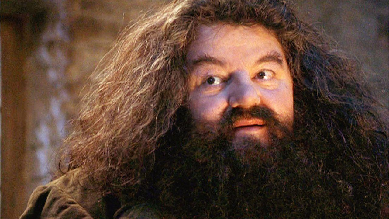 Harry Potter, l'interprete di Hagrid difende JK Rowling dalle accuse di transfobia