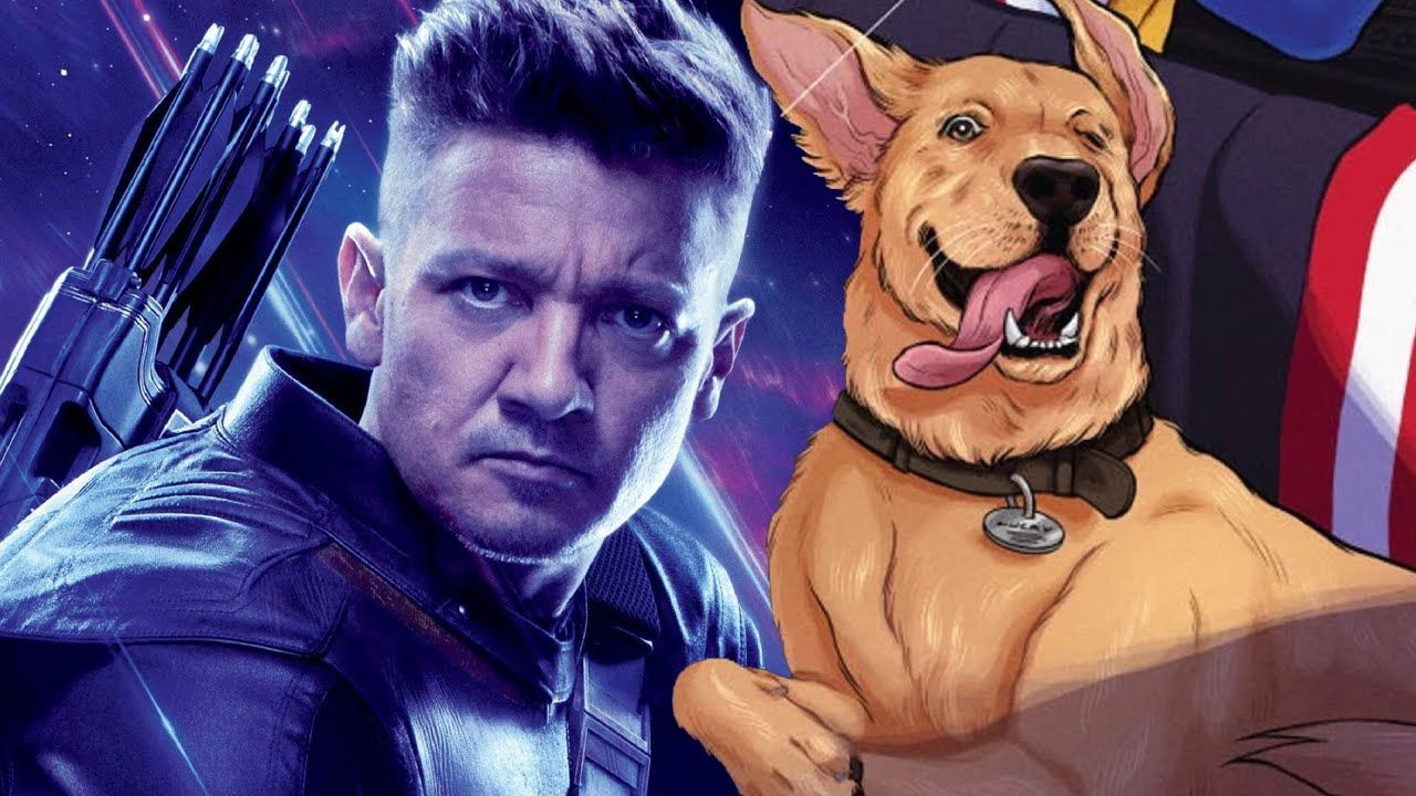 Hawkeye, Jeremy Renner ci mostra Lucky the Pizza Dog in una nuova foto dal set