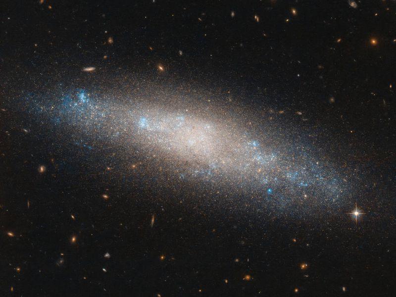Hubble osserva uno spettacolare insieme stellare chiamato NGC 4455