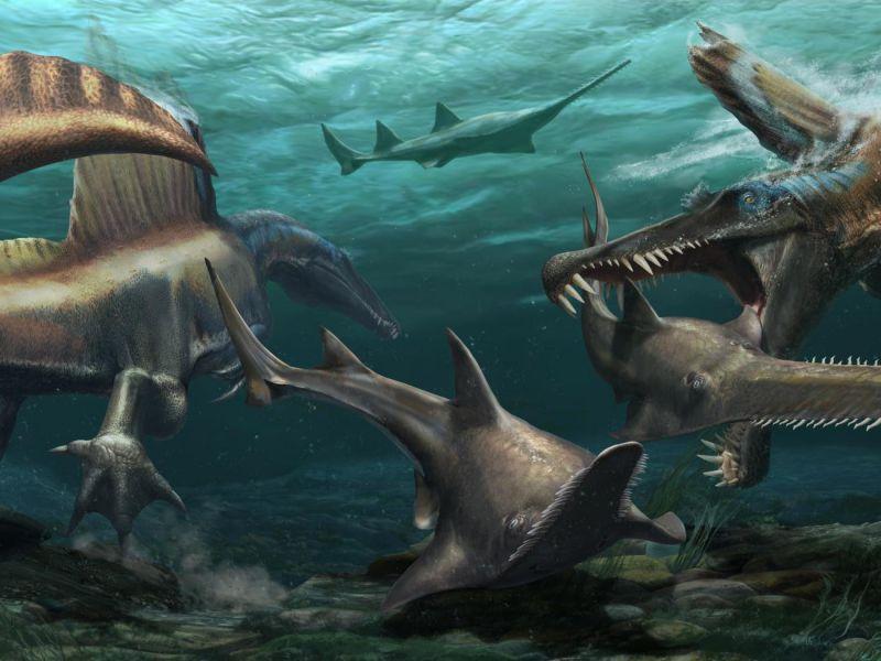 Identificato un dinosauro acquatico: scoperta riscrive ciò che sappiamo su queste creature