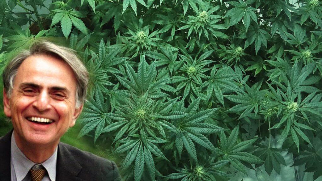 """Il famoso fisico Carl Sagan faceva uso di cannabis e in un """"saggio segreto"""" la elogia"""