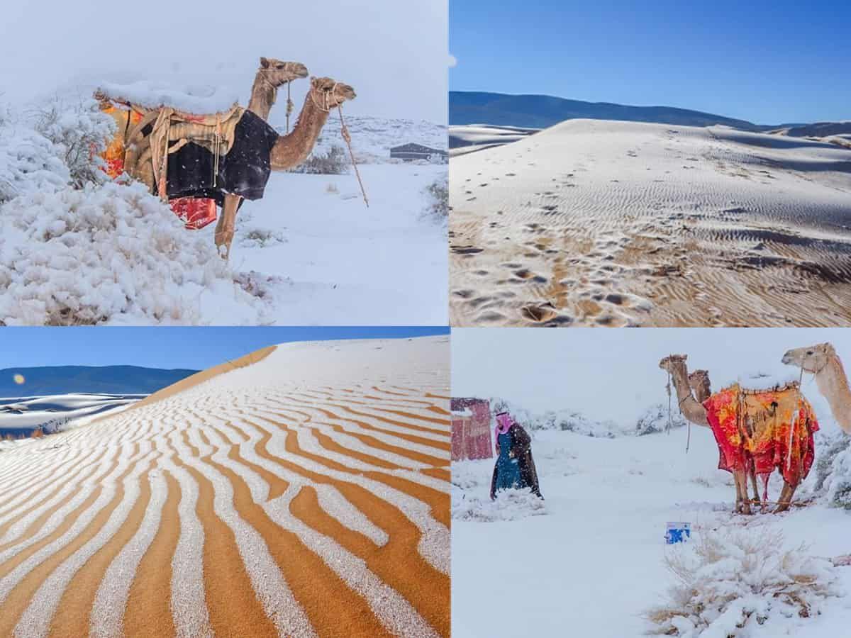 Il ghiaccio copre il deserto del Sahara: è accaduto solo 4 volte in 50 anni