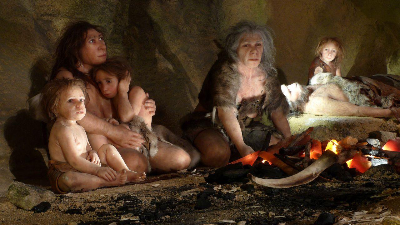 Il torace dei Neanderthal potrebbe essere una chiave per lo studio dell'evoluzione