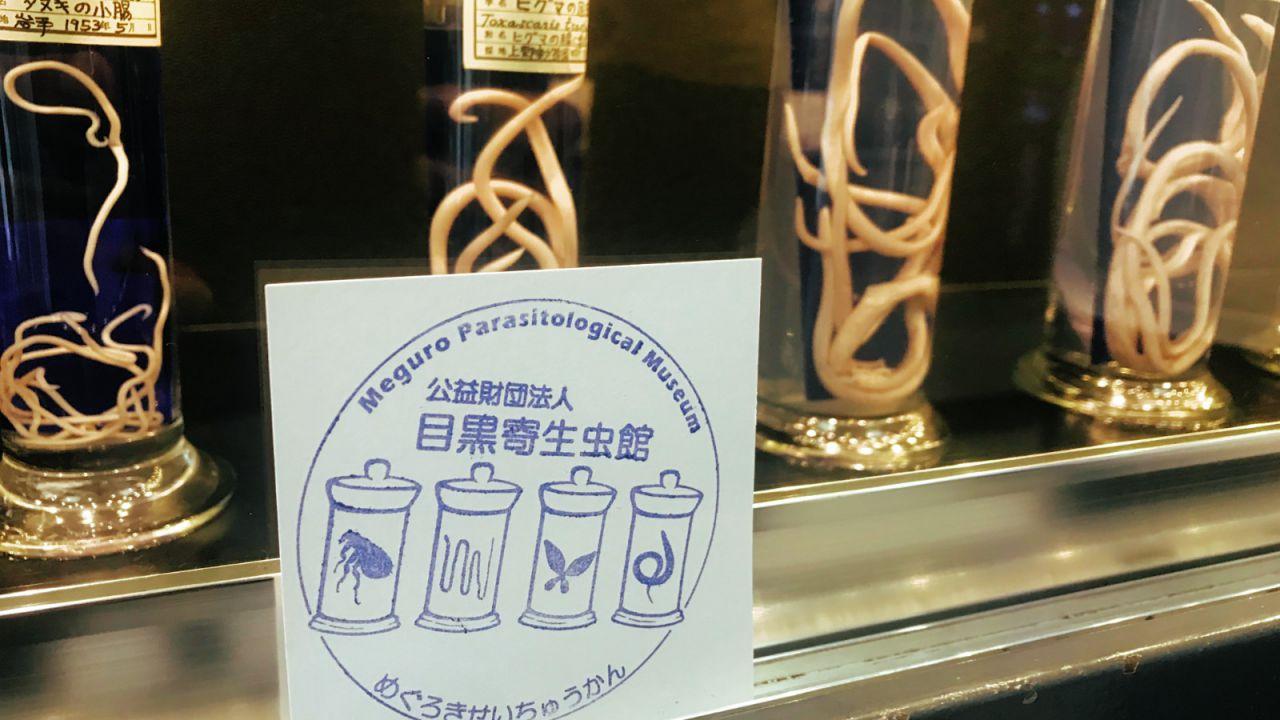 In Giappone c'è un museo dedicato interamente ai parassiti: ecco le impressionanti foto
