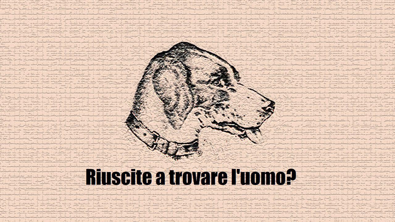 L'illusione ottica del cane: riuscite a vedere un uomo? Basta concentrarsi