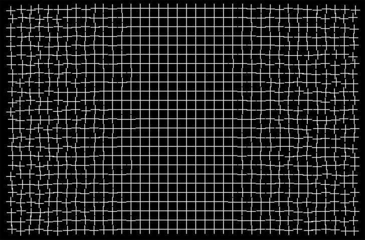 """La magia delle illusioni ottiche: questa griglia si """"ripara"""" automaticamente guardandola"""