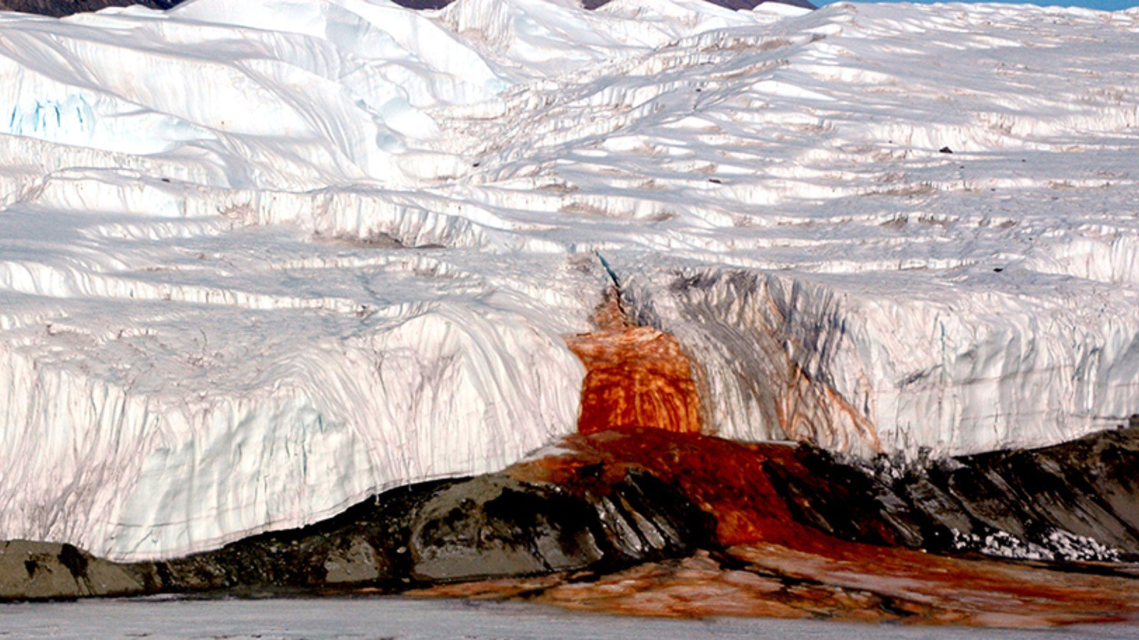 Le misteriose cascate di sangue dell'Antartide: scopriamo di che si tratta