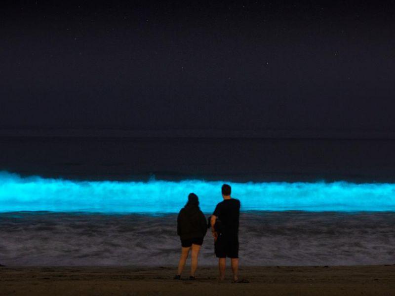 Le onde della California sono diventate di colore blu luminescente
