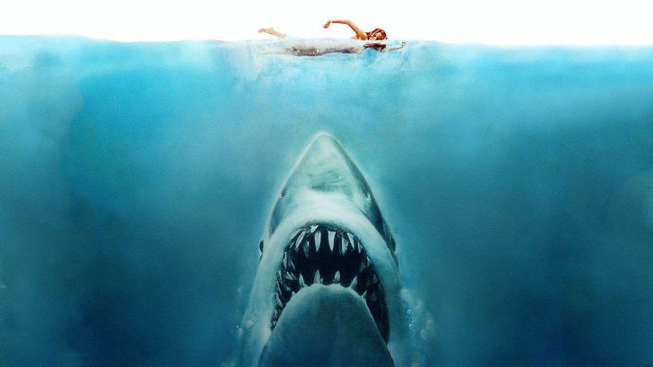 Lo squalo, scoprite tutte le differenze tra il libro e il film di Steven Spielberg
