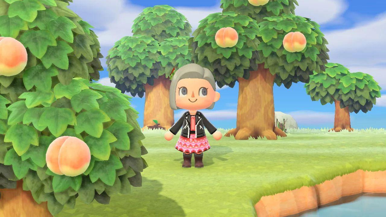 Lo sviluppo di Animal Crossing New Horizons è iniziato nel 2012