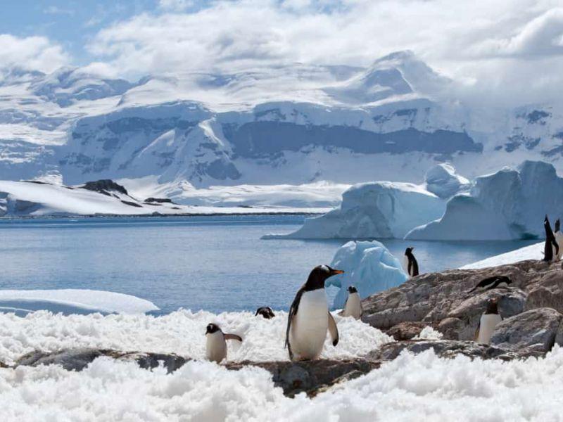 Microplastiche trovate per la prima volta nel ghiaccio dell'Antartide