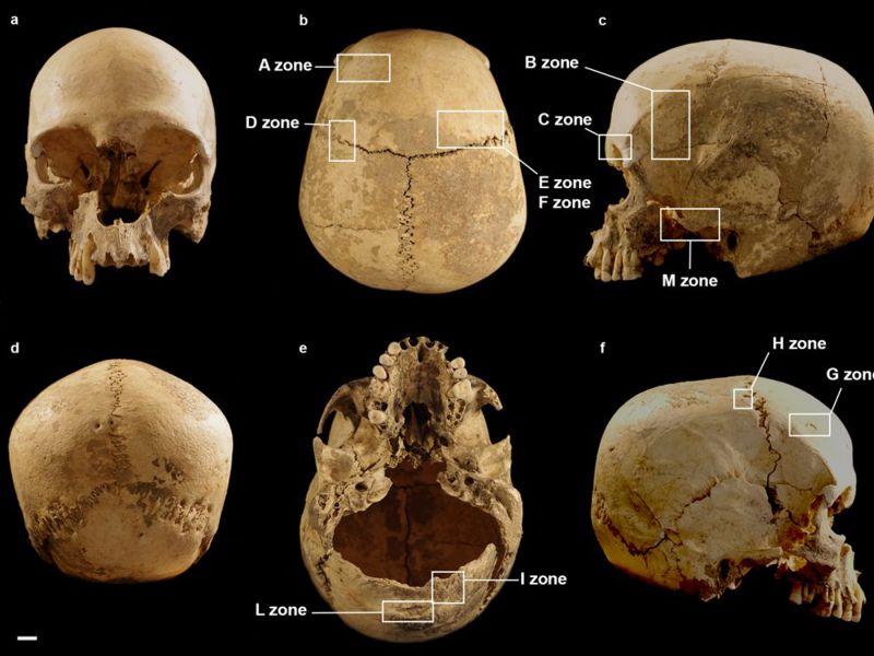 Nascono dei quesiti su un cranio umano trovato giù per la voragine 'Marcel Loubens'