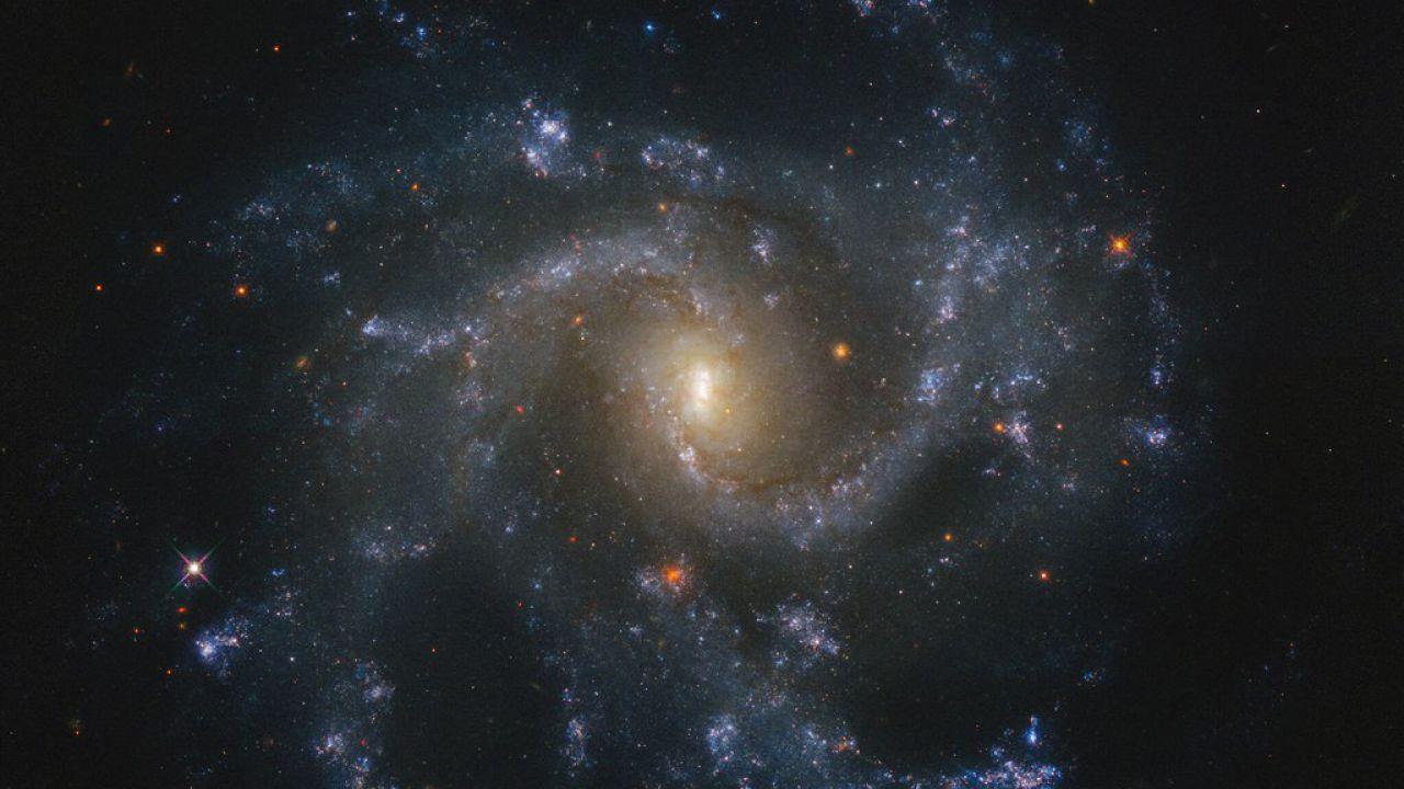 Negli ultimi 20 anni in questa galassia si sono verificate 5 supernovae