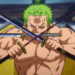 ONE PIECE, what would be the perfect devil fruit for Zoro?  Speak Oda