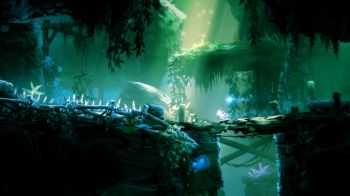 Ori and the Blind Forest Definitive Edition: rimandata la versione PC