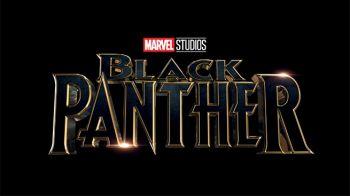 Pantera Nera: annunciato il cast!