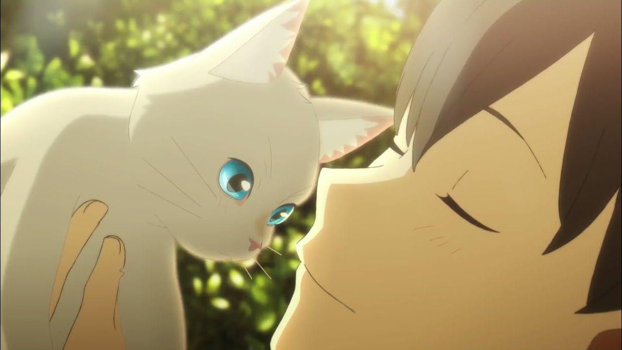 Pubblicate nuove informazioni sul film animato Wanting to Cry, I Pretend to Be a Cat