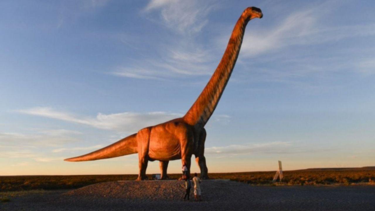 Qual è stata la più grande creatura mai vissuta sulla Terra? Esiste un vincitore?