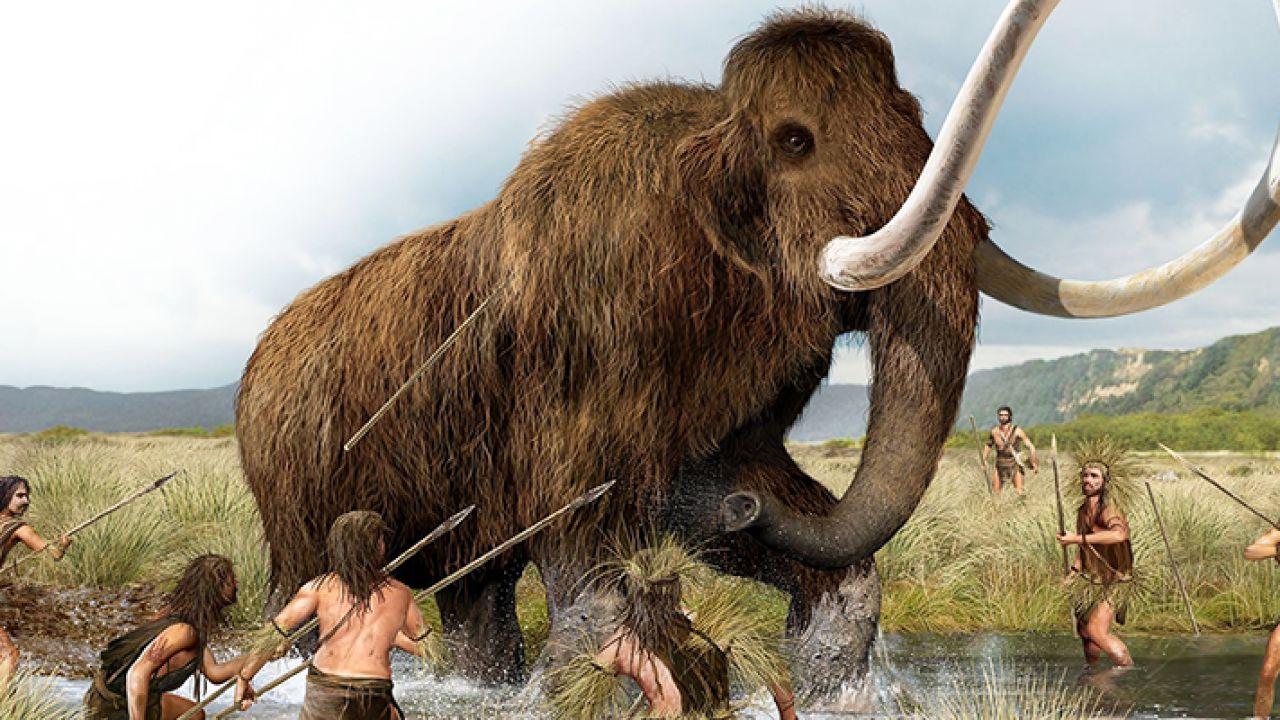 Qual è stata la prima specie che l'uomo ha portato all'estinzione?
