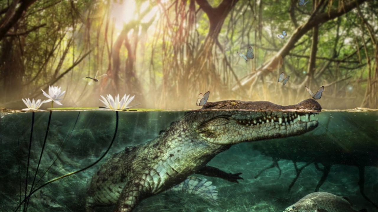 Quando le coste europee vennero colonizzate da una specie di coccodrilli africana