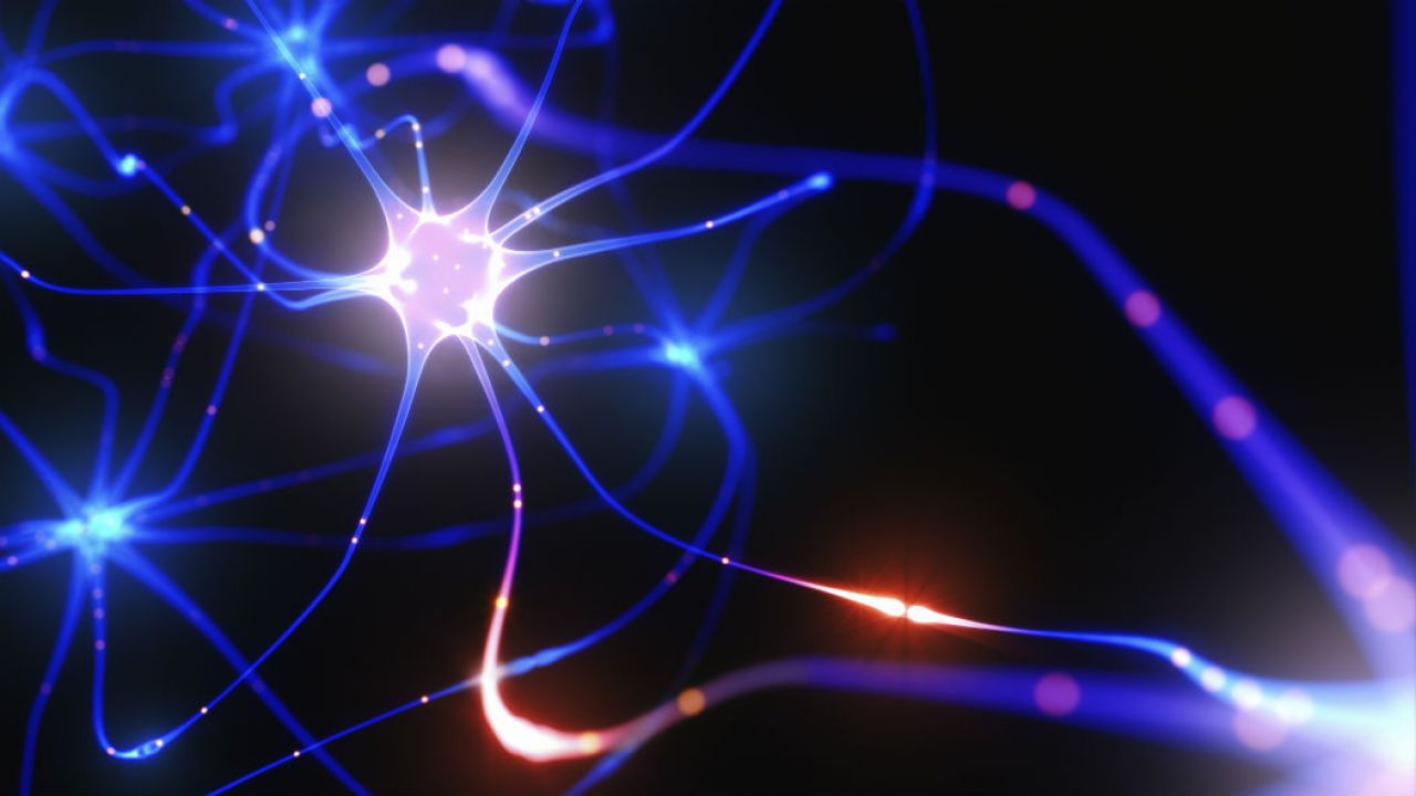 Creati i primi neuroni artificiali.