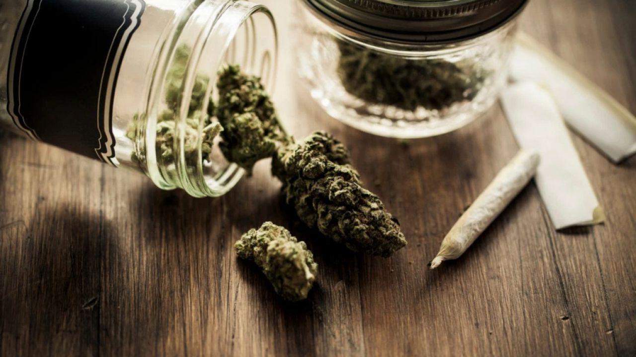 Si può andare in overdose di marijuana? Ecco la risposta della scienza