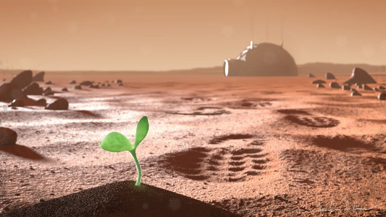Sono state simulate le condizioni del suolo di Marte per la crescita delle piante