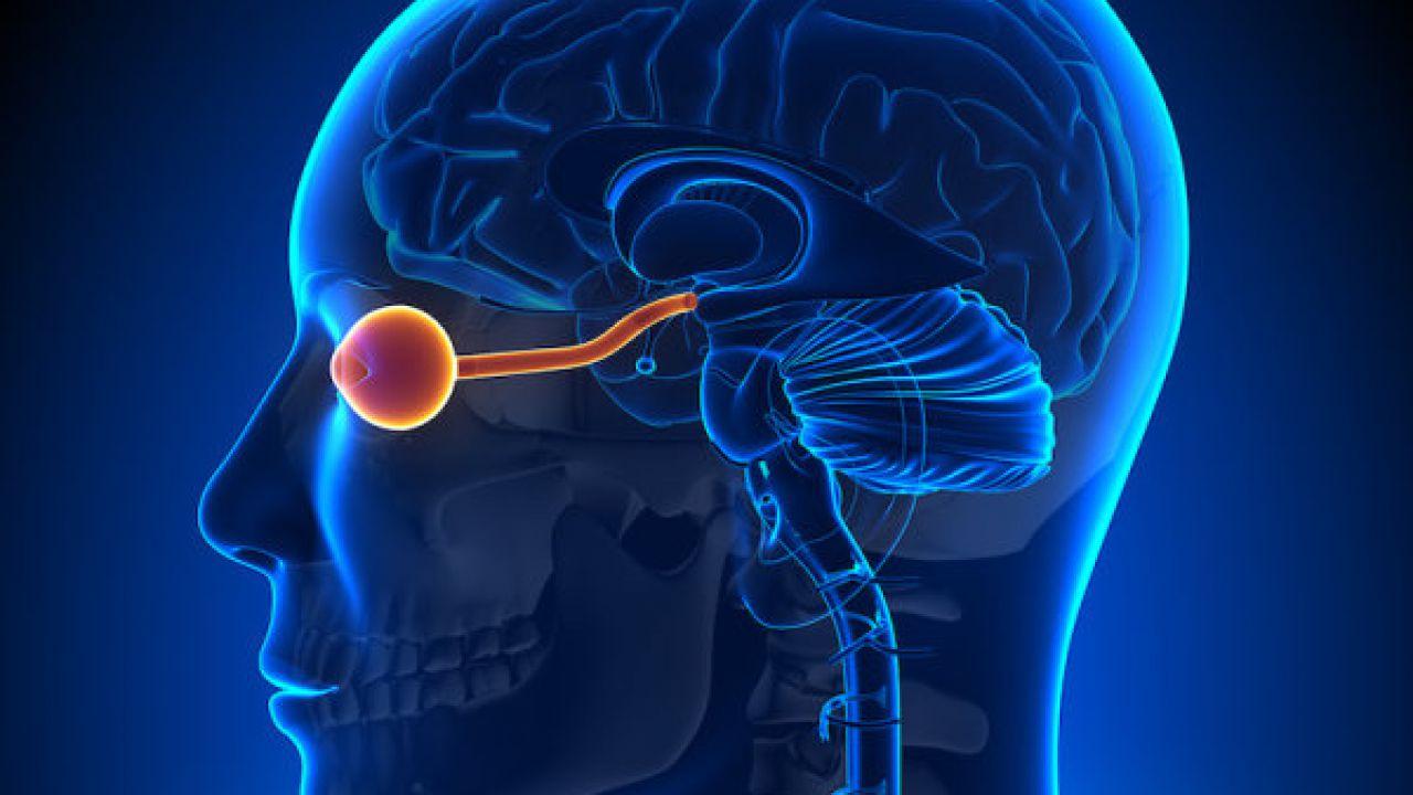 Stimolazione diretta del nervo ottico per aiutare i non vedenti
