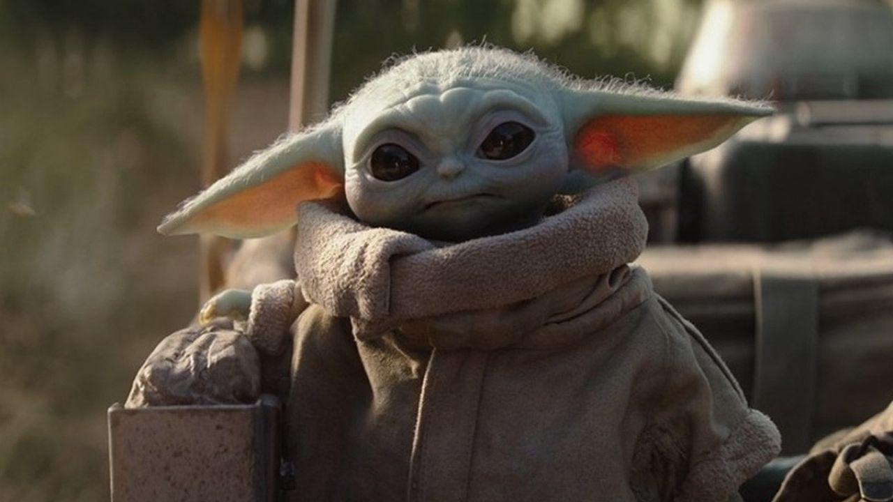 The Mandalorian, un gattino identico a Baby Yoda salvato in California fa impazzire il web