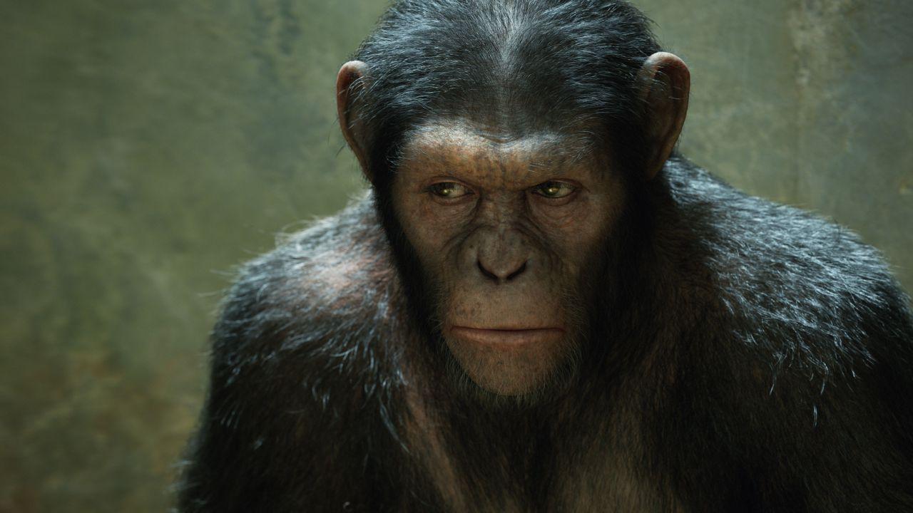 The War - Il Pianeta delle Scimmie: ecco la data d'uscita di DVD e Blu-Ray