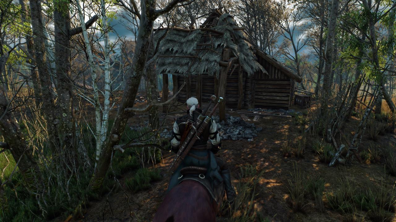 The Witcher 3: Wild Hunt - Ci sono differenze tecniche tra la versione PS4 e quella Xbox One?