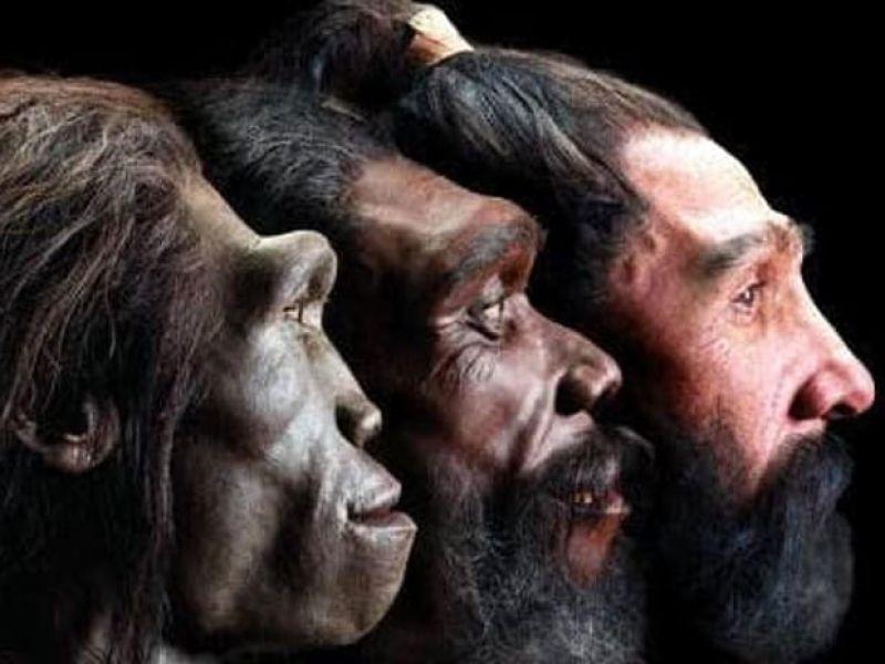 Trovate le più antiche testimonianze degli esseri umani moderni in Europa