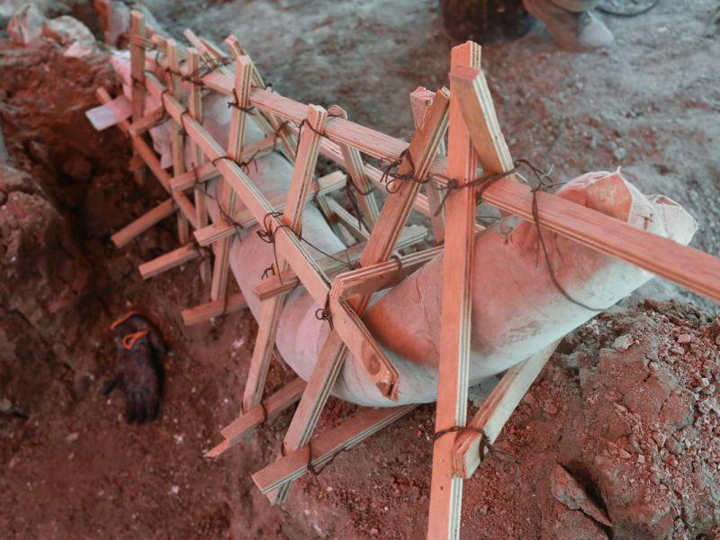 Trovati i resti di Mammut giganti in Messico: pesavano il doppio di un T-Rex