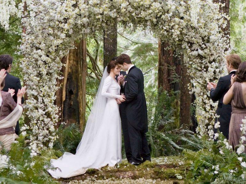 Twilight: come hanno fatto i Cullen a nascondere la loro fortuna?