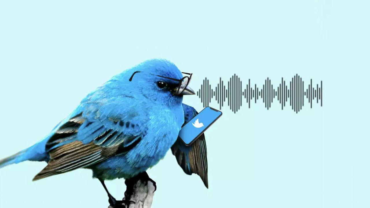 Twitter al lavoro sui messaggi vocali da inviare in privato: come funzioneranno