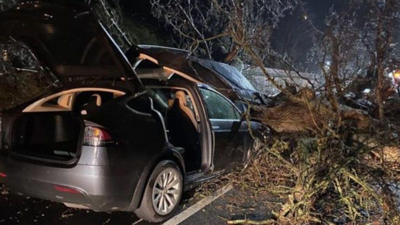 Un enorme albero cade su due Tesla Model X: passeggeri salvati dall'Autopilot