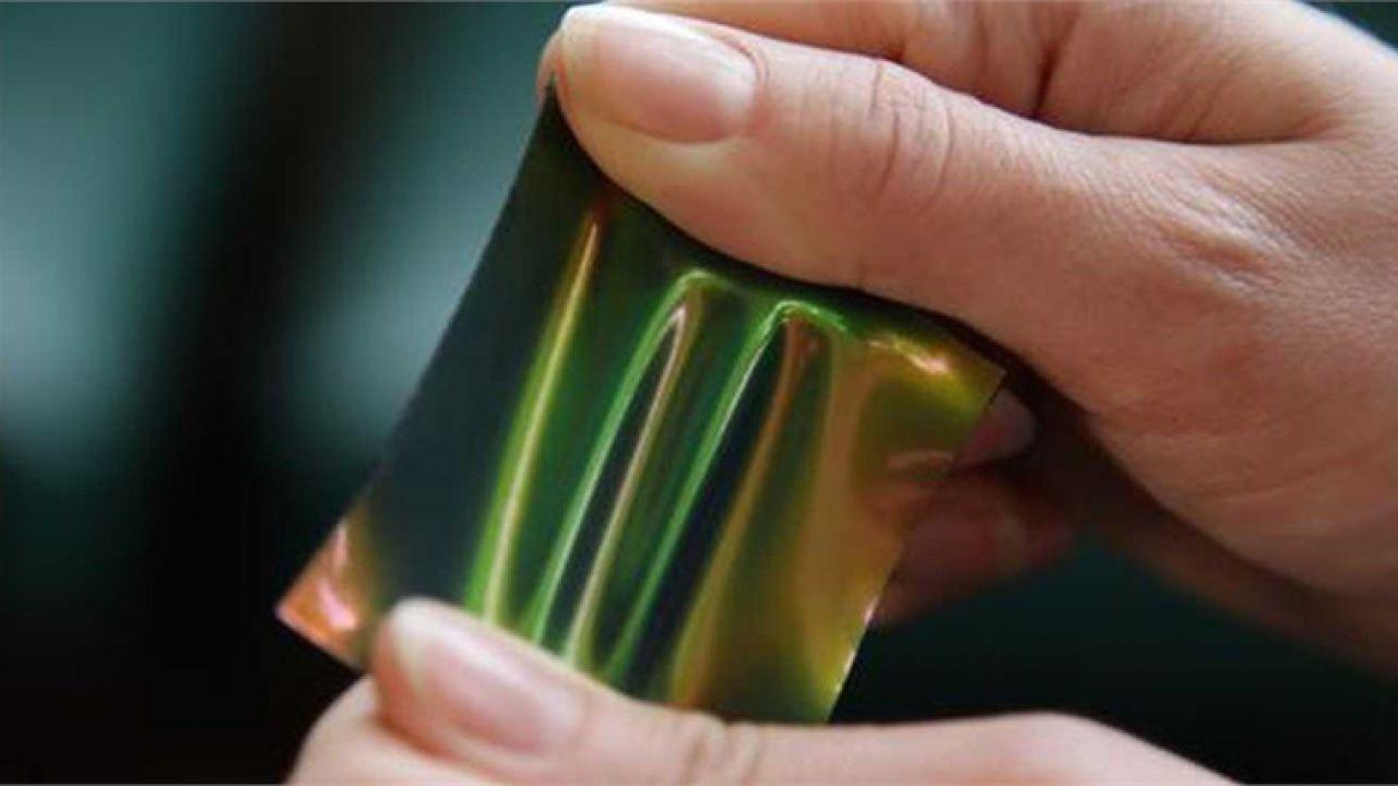 Un nuovo metodo per osservare i colori strutturali è stato scoperto 'per caso'