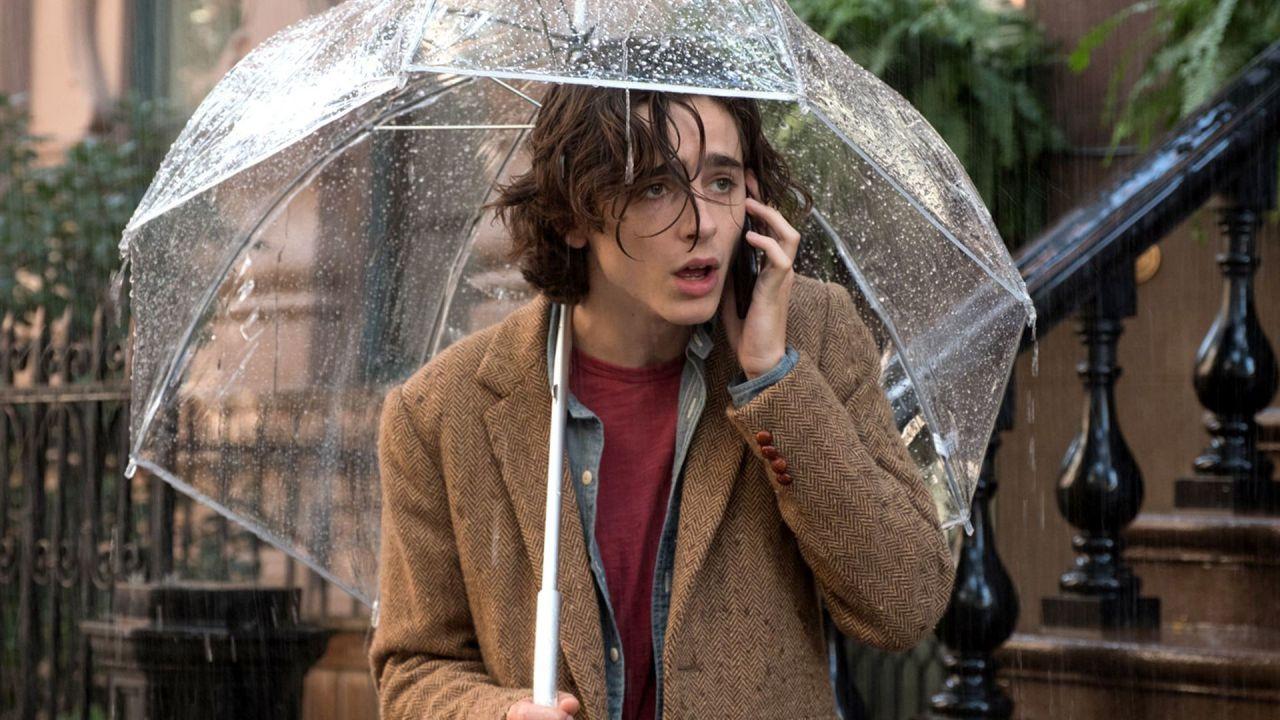 Woody Allen dice che Chalamet lo ha denunciato solo per aumentare le chance agli Oscar