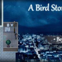 Immagini A Bird Story