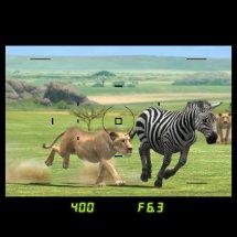 Immagini AFRIKA