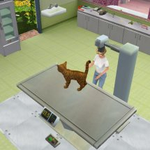 Immagini Animal Hospital: Pet Vet 3d