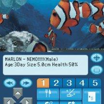 Immagini Aquarium By DS