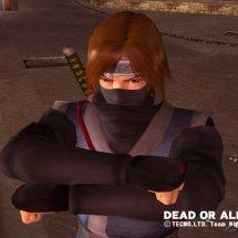 Immagini Dead or Alive 3