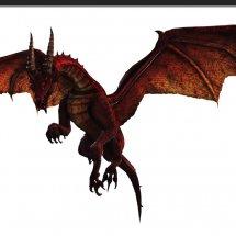Immagini Dragon's Prophet