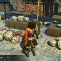 Immagini Dynasty Warriors BB