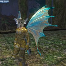 Immagini Everquest II: Echoes of Faydwer