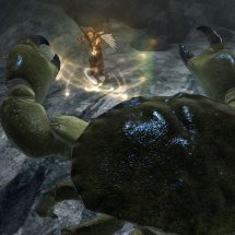 Immagini Faery: Legends of Avalon